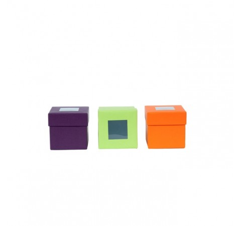 Pack de 12 boîtes C² Visio 50g - format 50x50x50/19